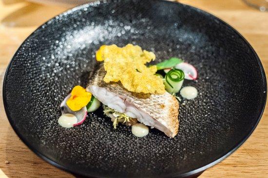 Veldhoven, Ολλανδία: FINE - Grilled Zeebaars - Salmon Tartar - Wasabi - Ginger Krokant