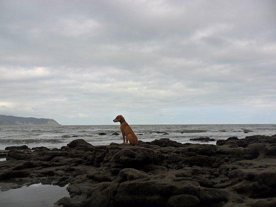 Provincia de Manabi, Ecuador: Rocas de las Playas del Napo San Vicente