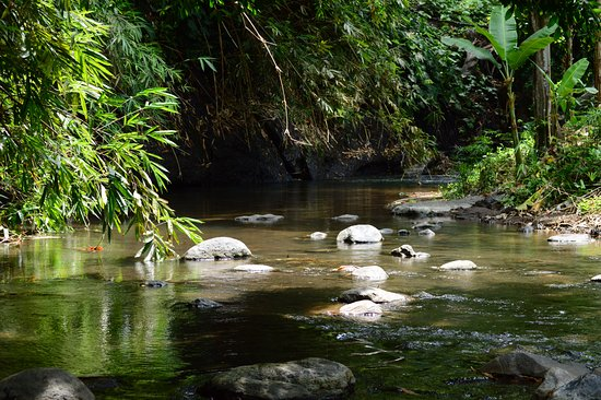 Mayong, Indonesia: Traverse through this cool and refreshing shallow stream