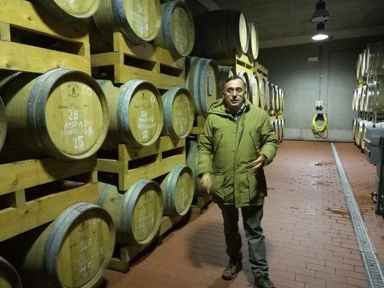Чиниджиано, Италия: Giovanbattista Basile e le sue barrique