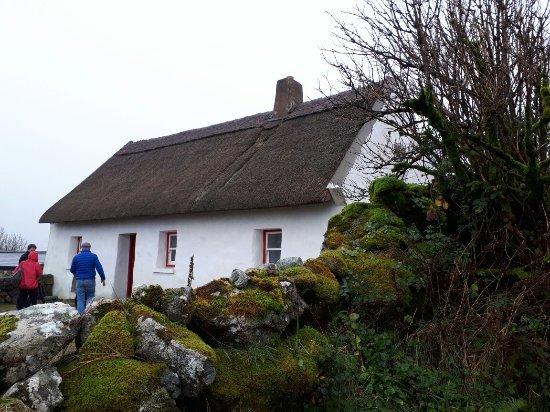 Spiddal, Ireland: 20171120_151542_large.jpg