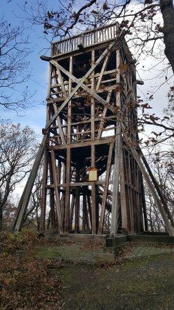 Der Preußenturm in Bad Suderode bietet nach der Besteigung einen tollen Ausblick in den Harz.