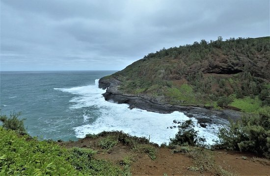 Kilauea, HI: Red-footed boobies live on that point