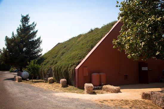 Healdsburg, CA: Living Roof of Rosemary