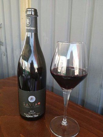 Buen vino de Bullas