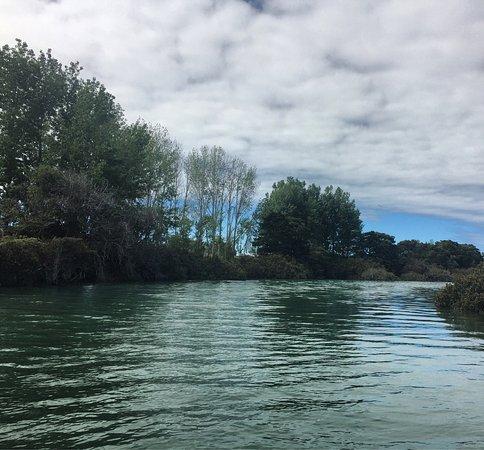 Matakana, Nuova Zelanda: photo0.jpg