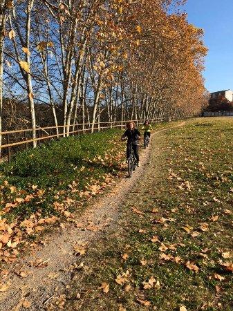 Bicicarril: photo0.jpg