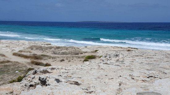 6 playa de ses illetes