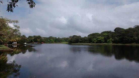 Mata de Sao Joao, BA: Laguna.