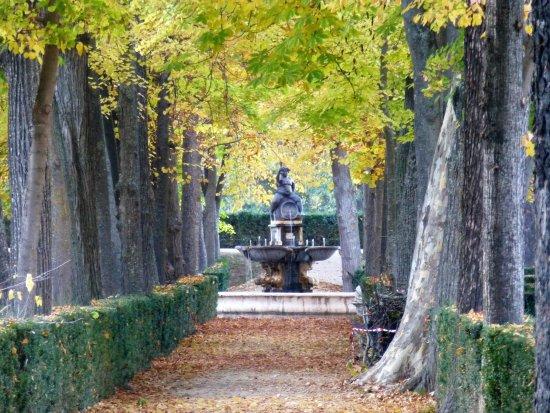 fuente de baco picture of jardin de la isla aranjuez