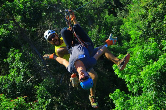 Selvatica: Upside down was pretty awesome