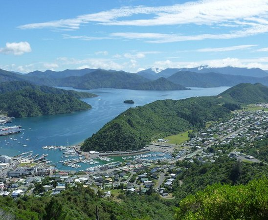 Picton, Yeni Zelanda: 1 hour scenic Marlborough tours available