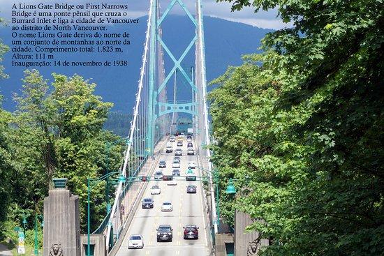 Fun City Sightseeing Hop On Hop Off: Cruzando por cima da ponte Lions