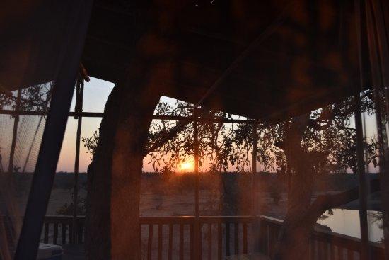 Timbavati Private Nature Reserve, Sudáfrica: The treehouse