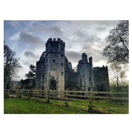 Mallow Castle: IMG_20171120_202511_673_large.jpg