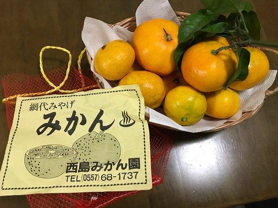 Nishijima Farm