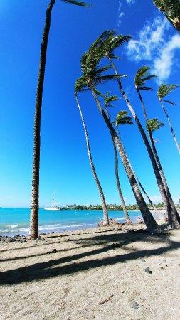 Waikoloa, HI: 1104171351_large.jpg