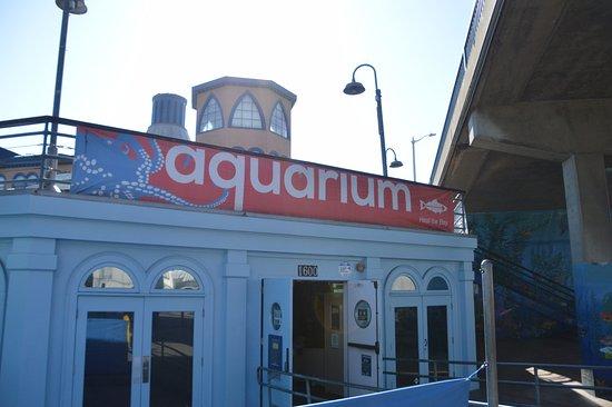 Santa Monica Pier Aquarium: outside