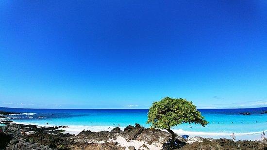 Manini'owali Beach (Kua Bay): 1108171109_large.jpg