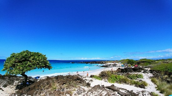 Manini'owali Beach (Kua Bay): 1108171109a_large.jpg