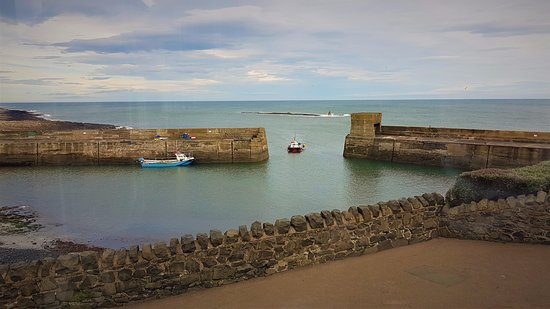Craster, UK: The view across the harbour from the best table in the house.