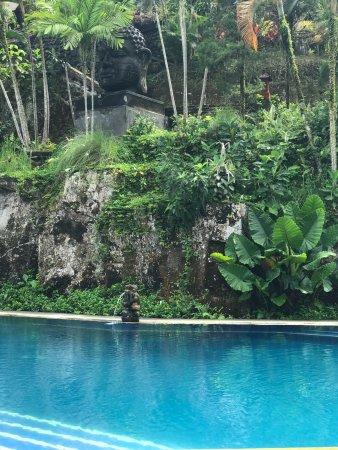 Bali Spirit Hotel and Spa : photo3.jpg