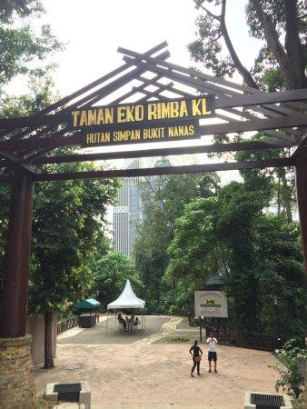 Foto De Kl Forest Eco Park Kuala Lumpur La Canopee Et Les