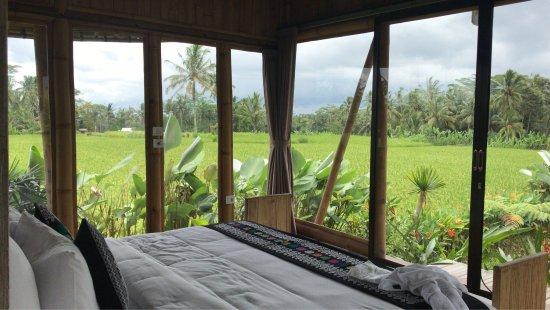 Bali Eco Village: Maravilloso hotel, el servicio la infraestructura inmejorable. El mejor hotel para conocer Bali❤