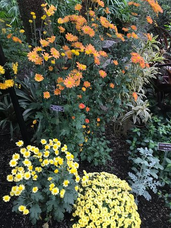 Brookside Gardens Wheaton Md Updated 2018 Top Tips