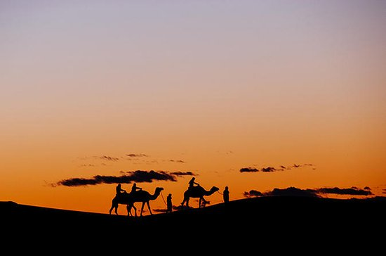 Dubai Sunset Camel Trekking