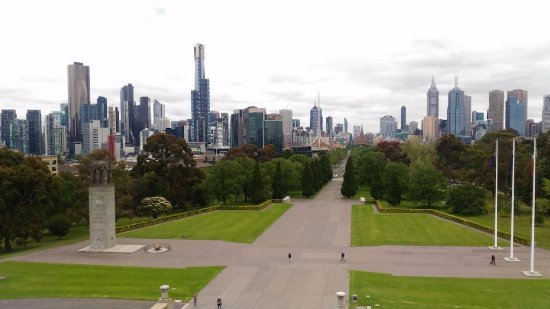 Freddy's Bike Tours: View from Shrine of Remembrance