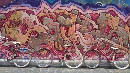 Freddy's Bike Tours: Hosier Ln.