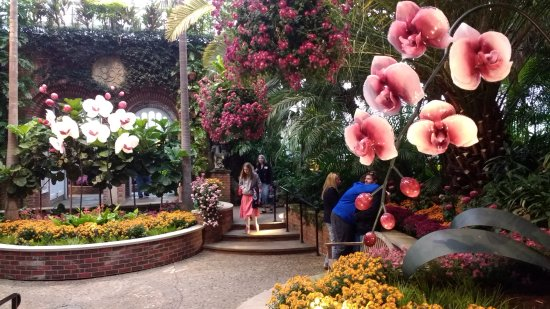 Phipps Conservatory and Botanical Gardens Photo