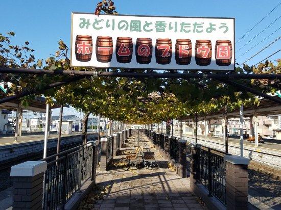 Shiojiri, Japan: 日本で唯一ブドウ棚のある駅