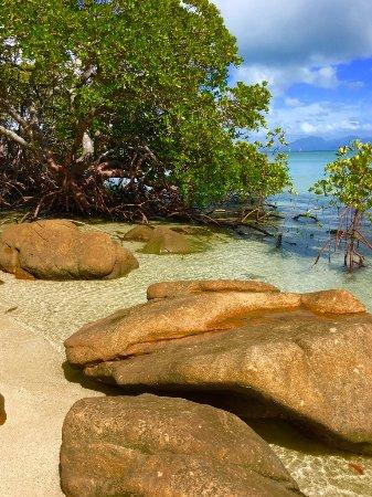 Orpheus Island Lodge Photo