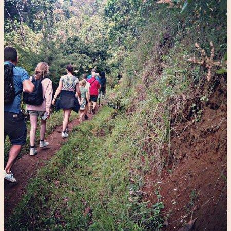 Serengeti-Park Hodenhagen: Short hikking to Materuni waterfalls