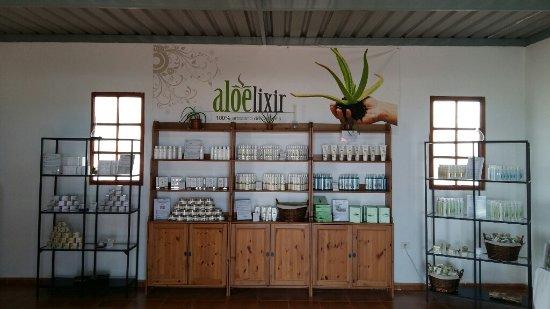 Ingenio, Spain: The Gran Canaria Aloë shop