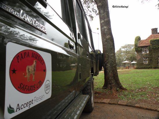 Papa Musili Safaris