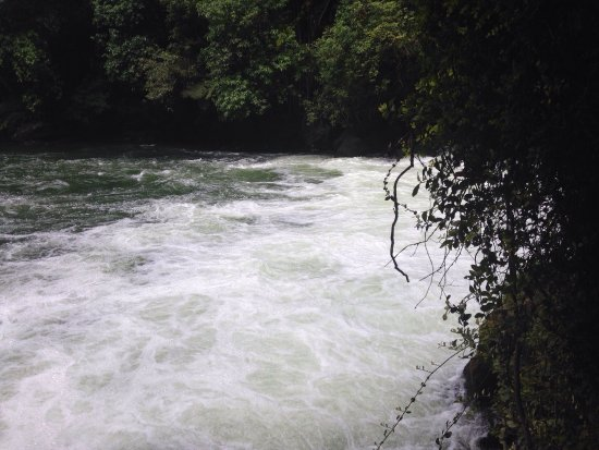 Okere Falls, New Zealand: photo1.jpg