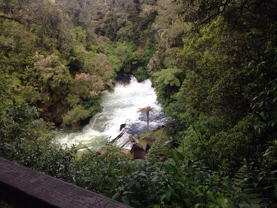 Okere Falls, New Zealand: photo2.jpg
