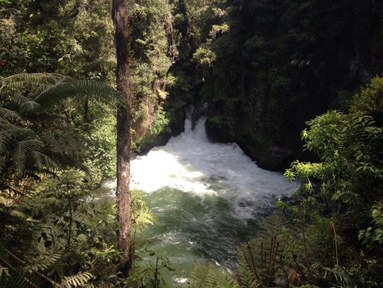 Okere Falls, New Zealand: photo5.jpg