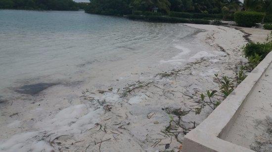 St. George's Caye foto