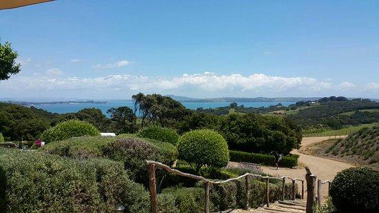 Oneroa, Nueva Zelanda: IMG-20171121-WA0031_large.jpg