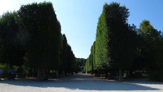 Schonbrunner Gardens : the Gardens