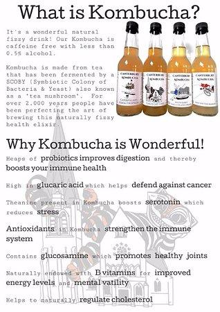 West Melton, Nueva Zelanda: kombucha great health benifits