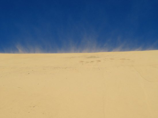 Cape St Francis, Sudafrica: A slight wind!