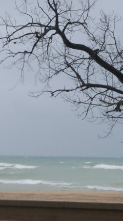 Chesterton, IN: It's still beautiful in November, despite the wind and rain.