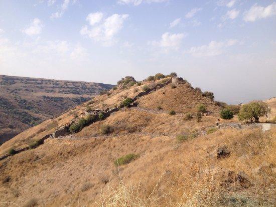 Golan Heights: Gamla