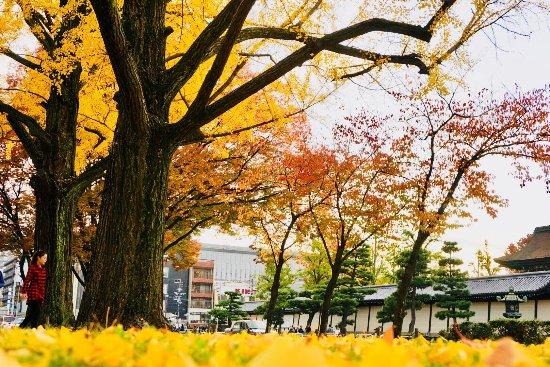 Higashi Honganji: photo2.jpg