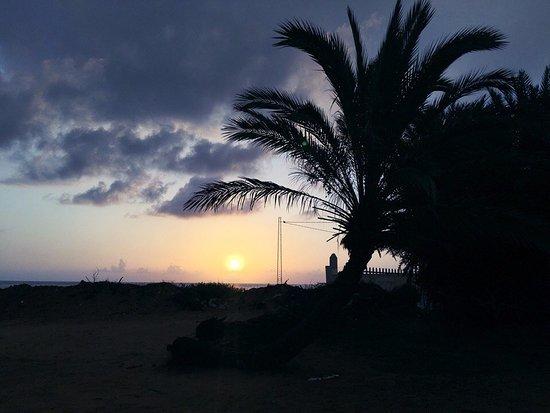 Diana Beach Club Photo